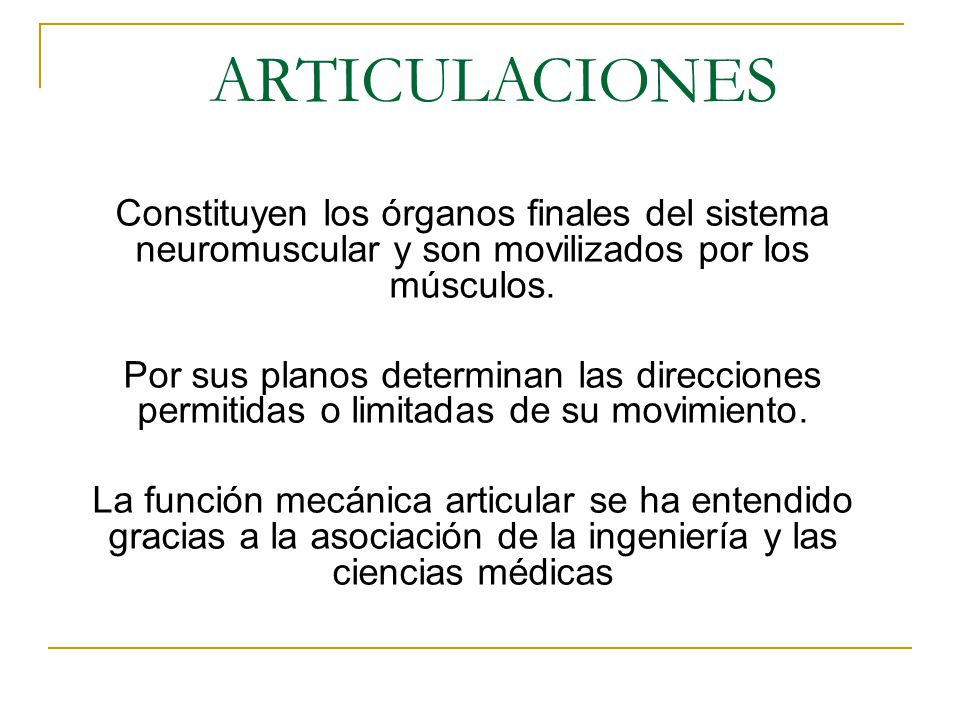 ARTICULACIONES Constituyen los órganos finales del sistema ...
