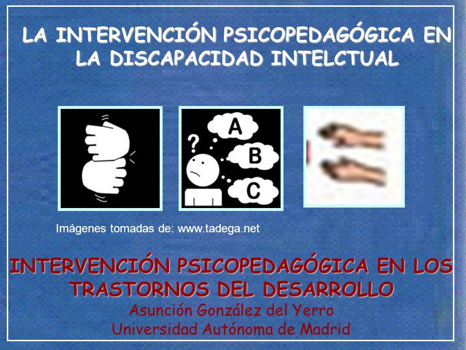 LA INTERVENCIÓN PSICOPEDAGÓGICA EN LA DISCAPACIDAD INTELCTUAL - ppt ... b95306034f3