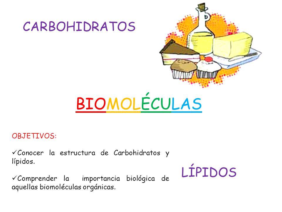 BIOMOLÉCULAS CARBOHIDRATOS LÍPIDOS OBJETIVOS: