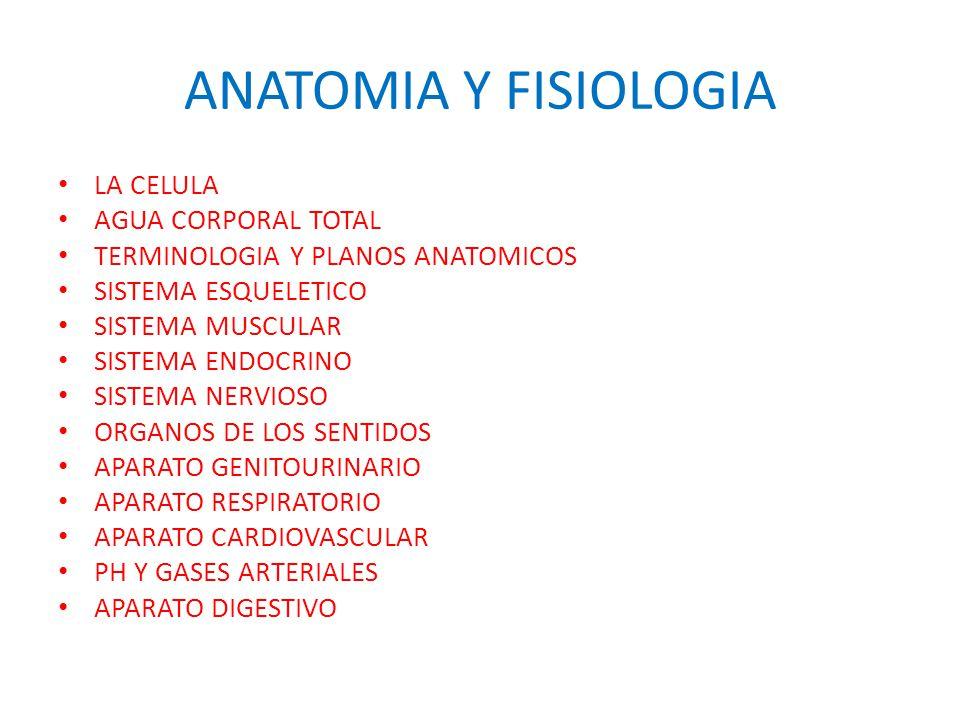 Excelente Anatomía Y Fisiología De Una Célula Festooning - Anatomía ...