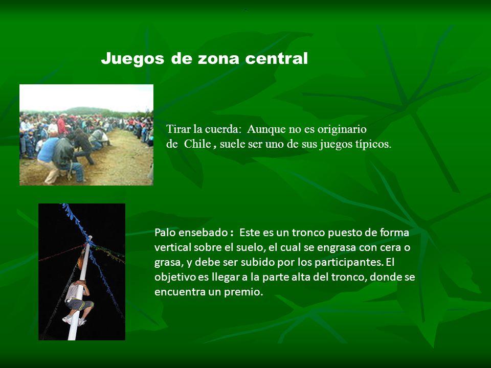 Zona Central Integrantes Noemi Barrera Francisco Matamala Ppt