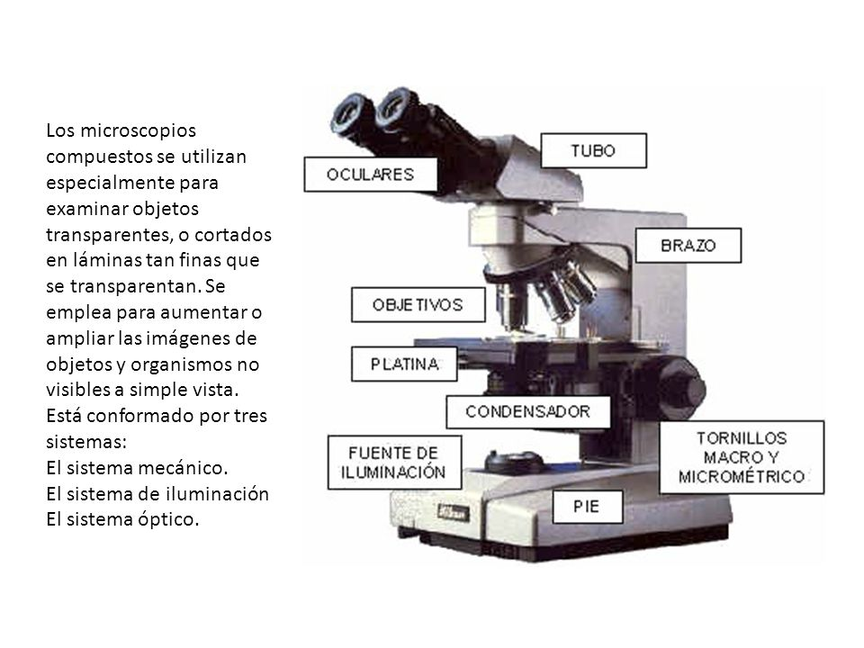Resultado de imagen para microscopio compuesto