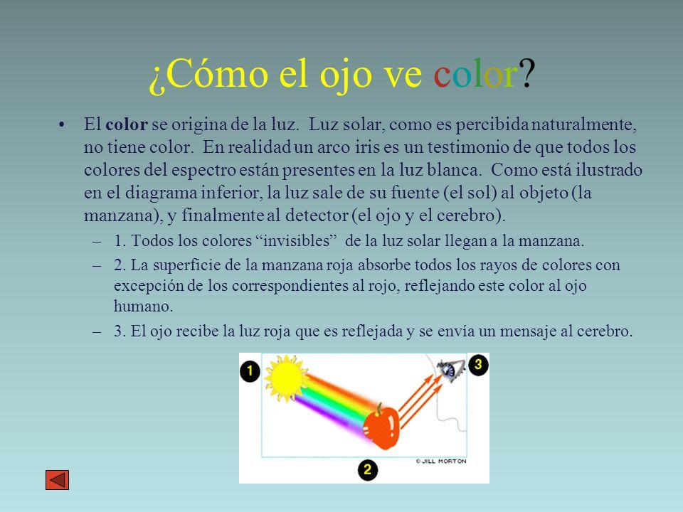 Teoría del Color. - ppt descargar
