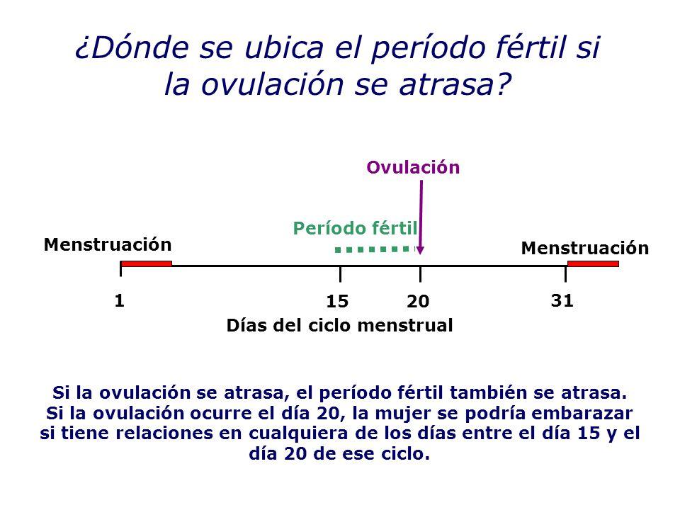 Calendario Menstrual De 31 Dias.Nociones Basicas Sobre La Generacion De Un Nuevo Ppt Descargar