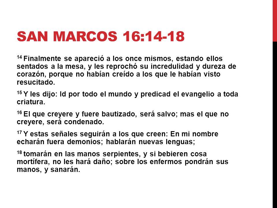 SAN MATEO 28: LA GRAN COMISION SAN MATEO 28: ppt descargar