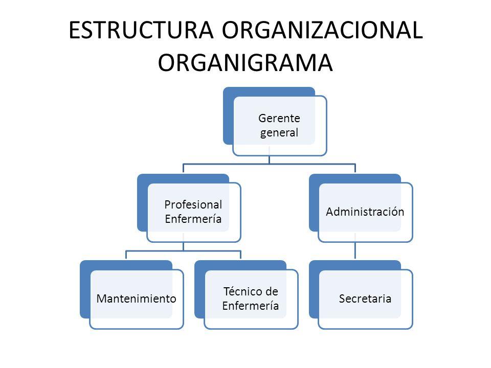 Plan de negocios topico de enfermeria ppt video online for Plan de negocios ejemplo pdf