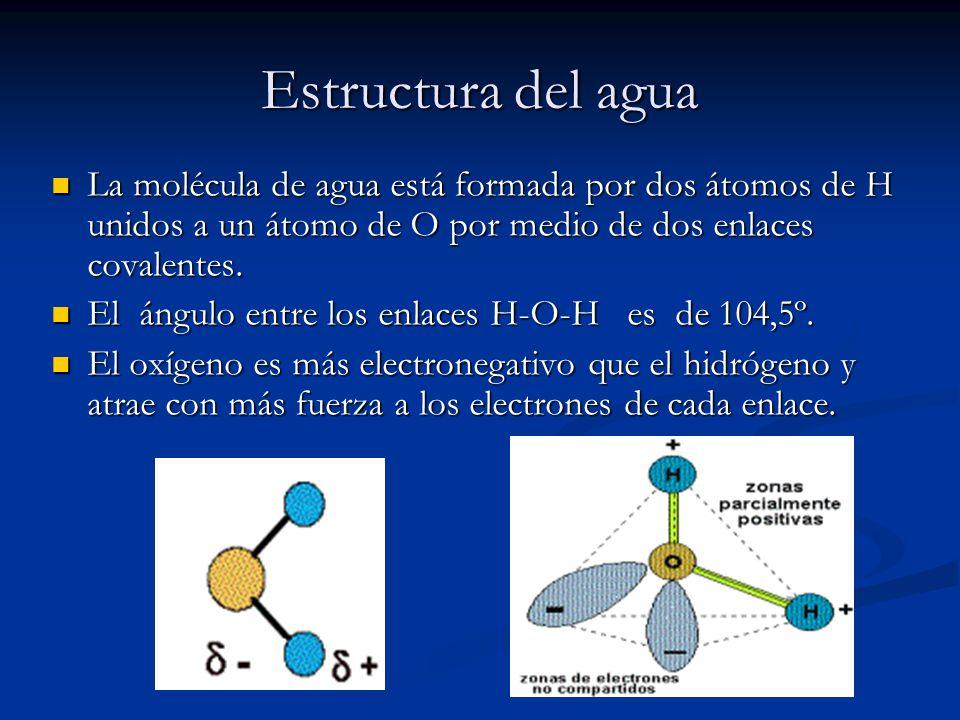 Estructura Y Propiedades Del Agua Ppt Video Online Descargar
