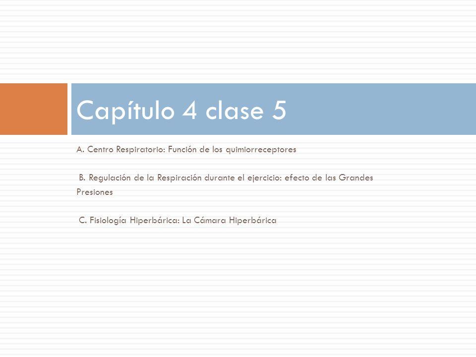 Capítulo 4 clase 5 A. Centro Respiratorio: Función de los ...