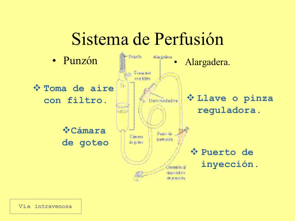 PERFUSION INTRAVENOSA EPUB