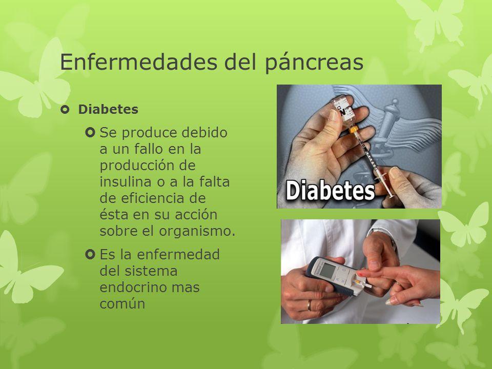 Enfermedades del sistema endocrino ppt video online descargar.