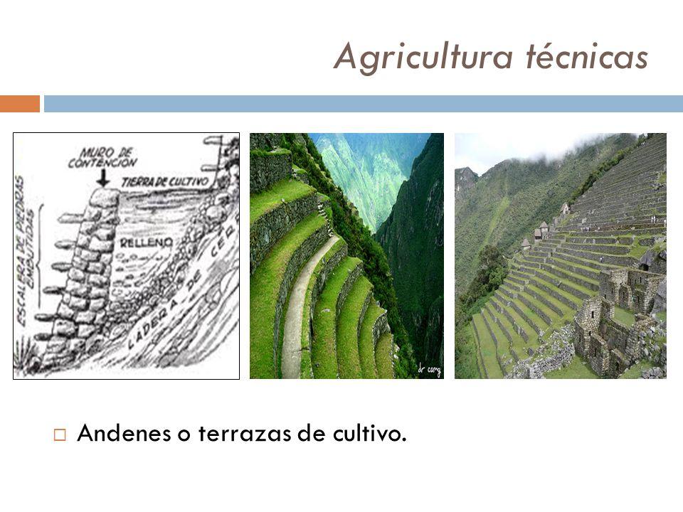 Agricultura Técnicas Canales Represas Y Puquios Ppt