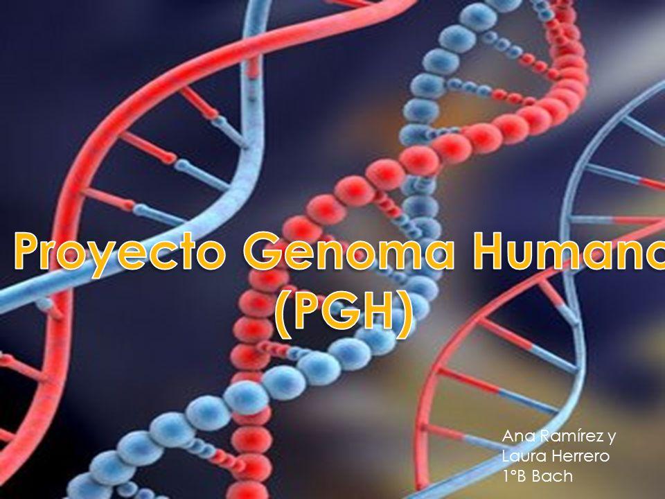 Resultado de imagen para Fotos del primer borrador del genoma humano.