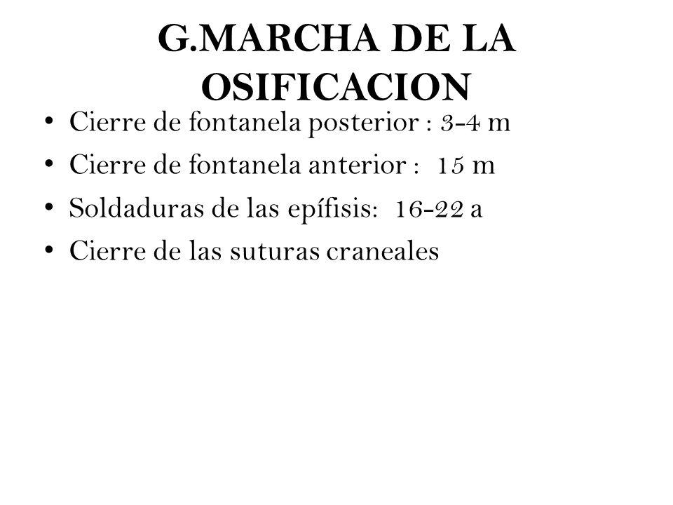 IDENTIFICACIÓN DEL CADÁVER - ppt descargar