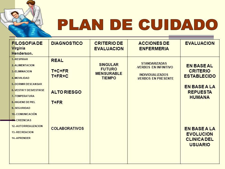 Excepcional Plantilla De Plan De Cuidado En Blanco Ornamento ...