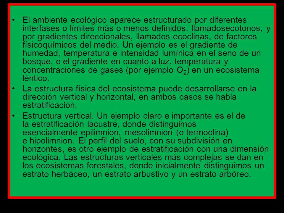 Presentacion Ecologia Y Medio Ambiente Ppt Descargar
