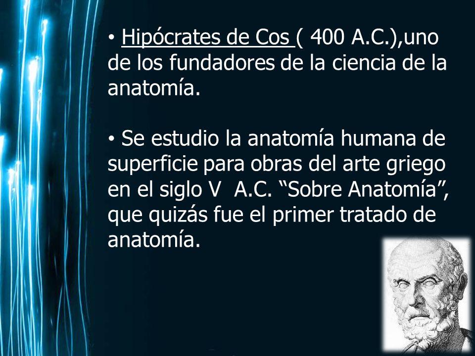 GENERALIDADES DE LA ANATOMIA - ppt video online descargar