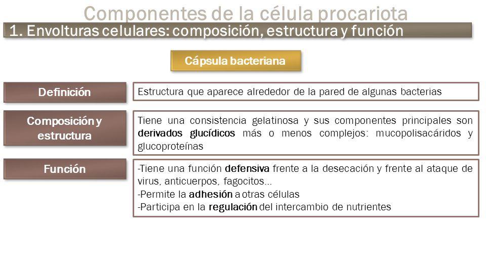 Microbiología General Ppt Descargar