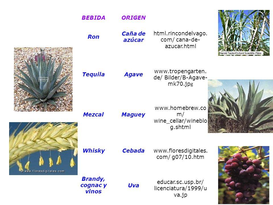 Qumica del carbn quimica orgnica ppt video online descargar 23 urtaz Choice Image