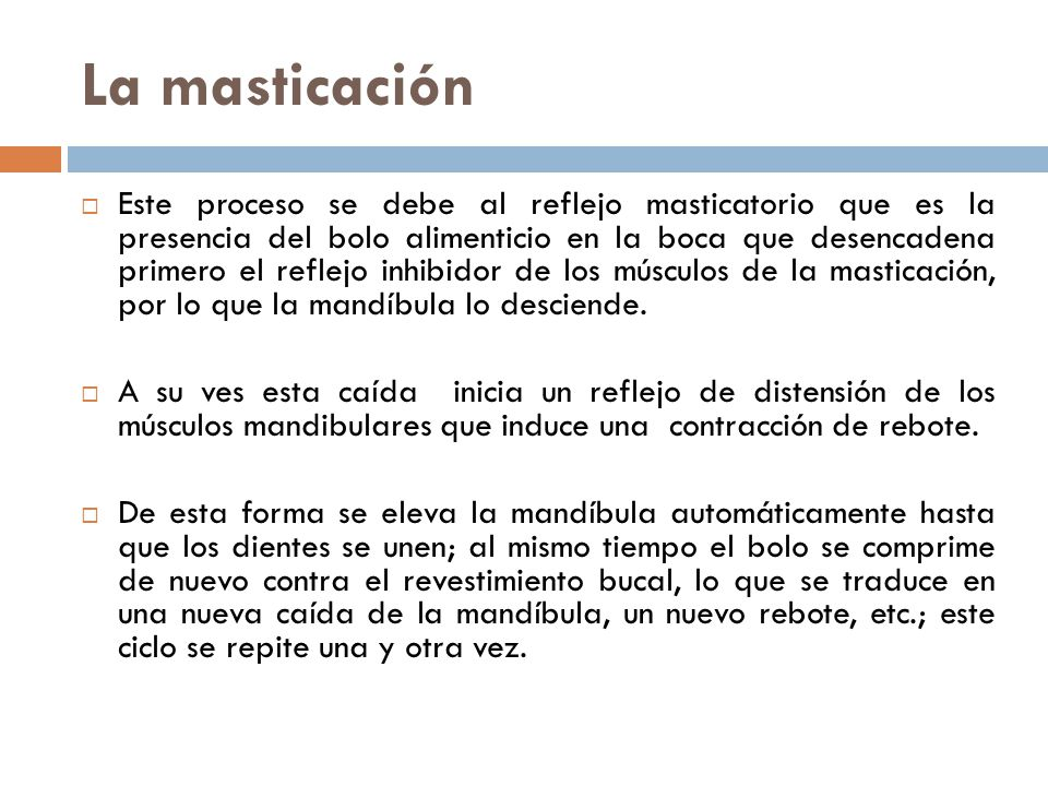 Capítulo 6 Clase 3 La masticación La deglución Mecanismos y ...
