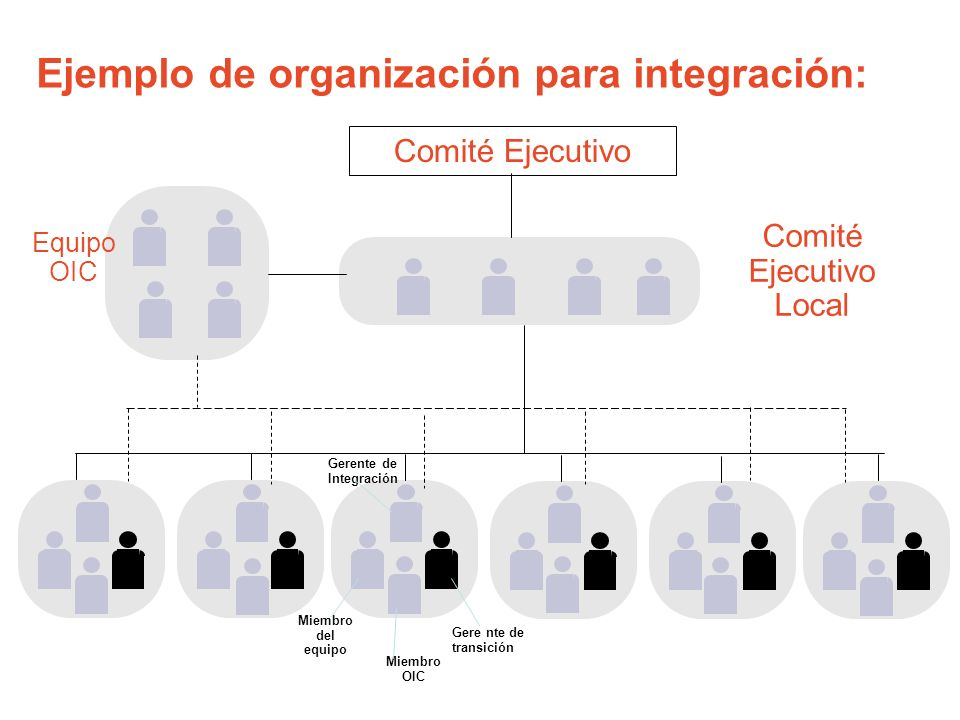 Comité Ejecutivo Local