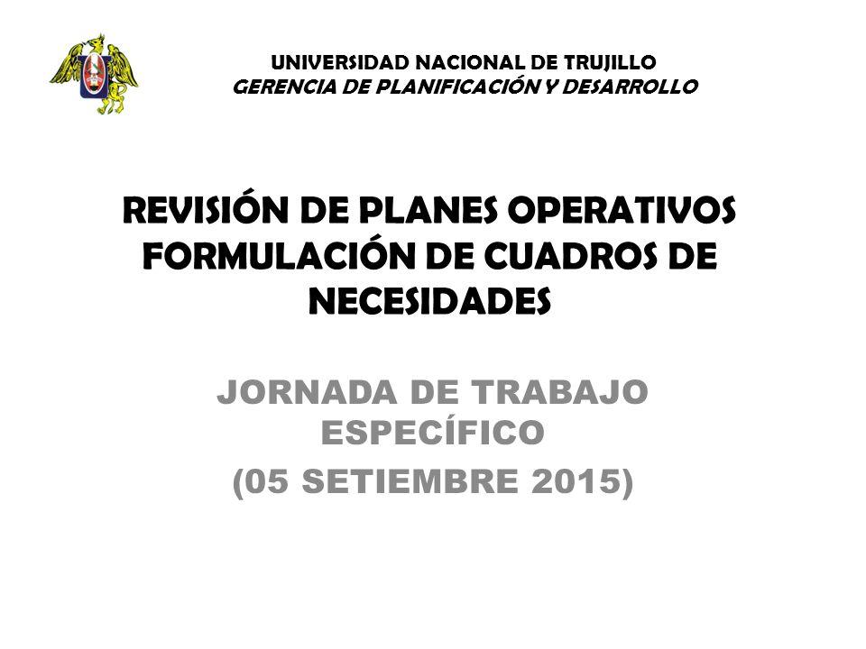 REVISIÓN DE PLANES OPERATIVOS FORMULACIÓN DE CUADROS DE NECESIDADES ...