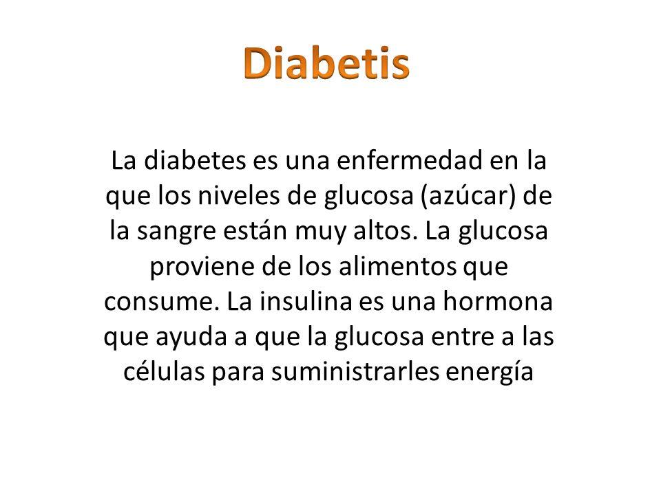 diabetis la diabetes es una enfermedad en la que los niveles de