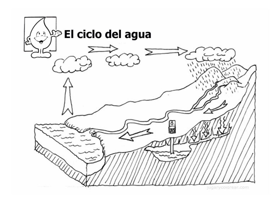 Students should be asked to draw their own version of the water cycle