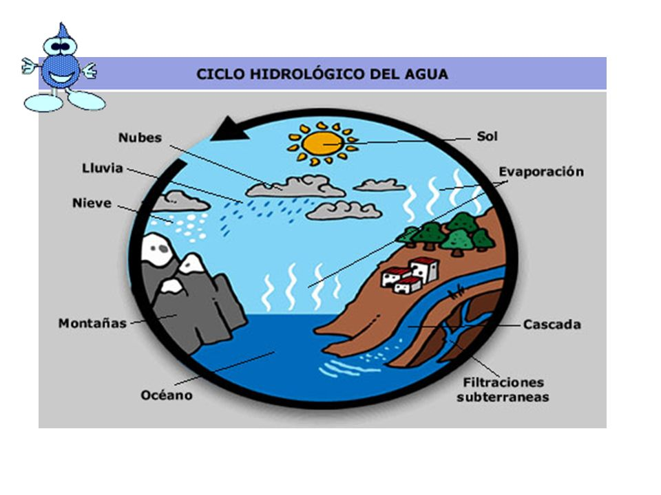 Example of simple labelling of water cycle