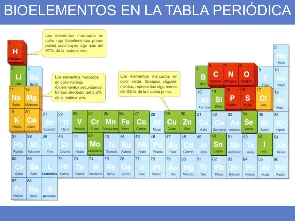 Bioelementos los elementos de la vida todos los seres vivos estn 3 bioelementos en la tabla peridica urtaz Image collections