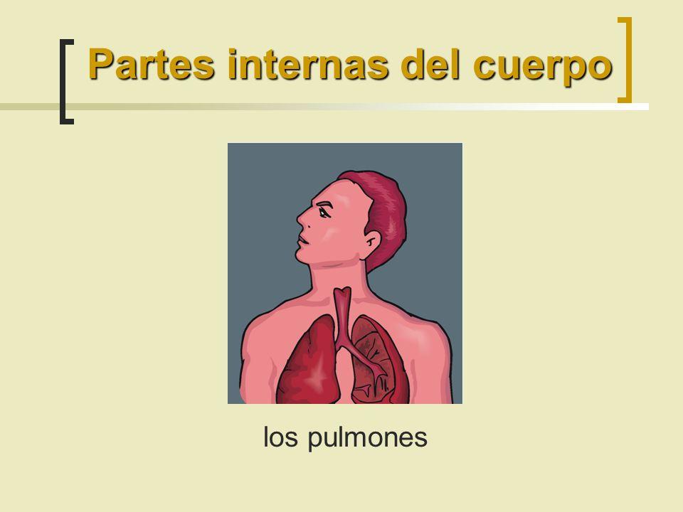 Las partes del cuerpo. - ppt descargar