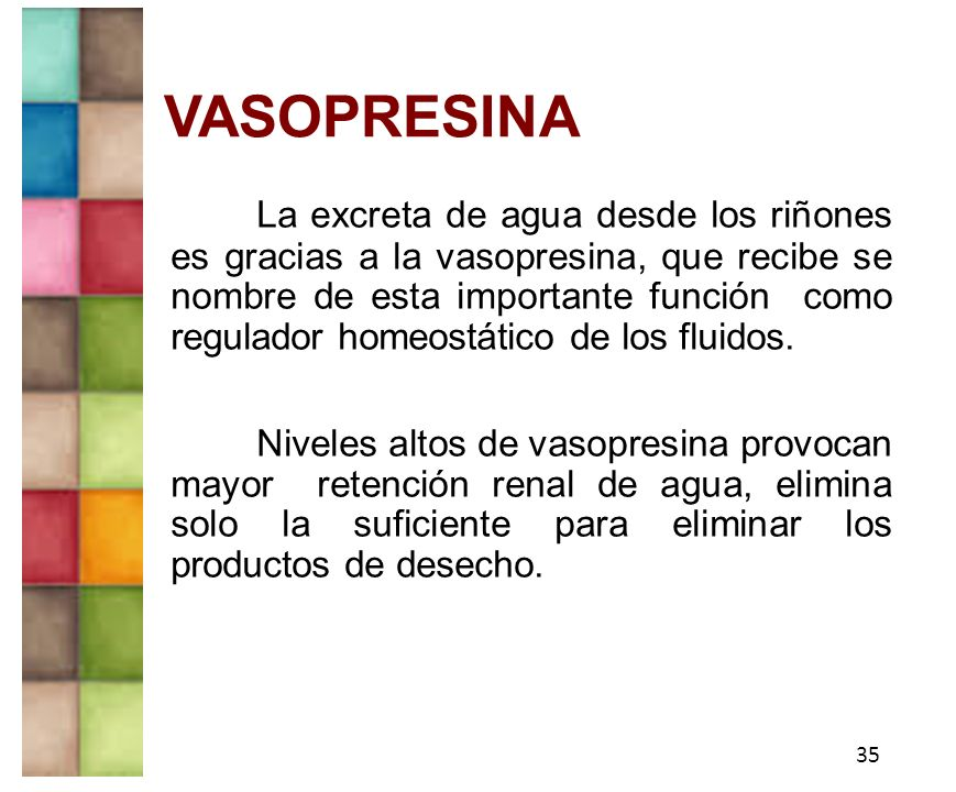 Aminoacidos y peptidos ppt video online descargar for Vaso resina
