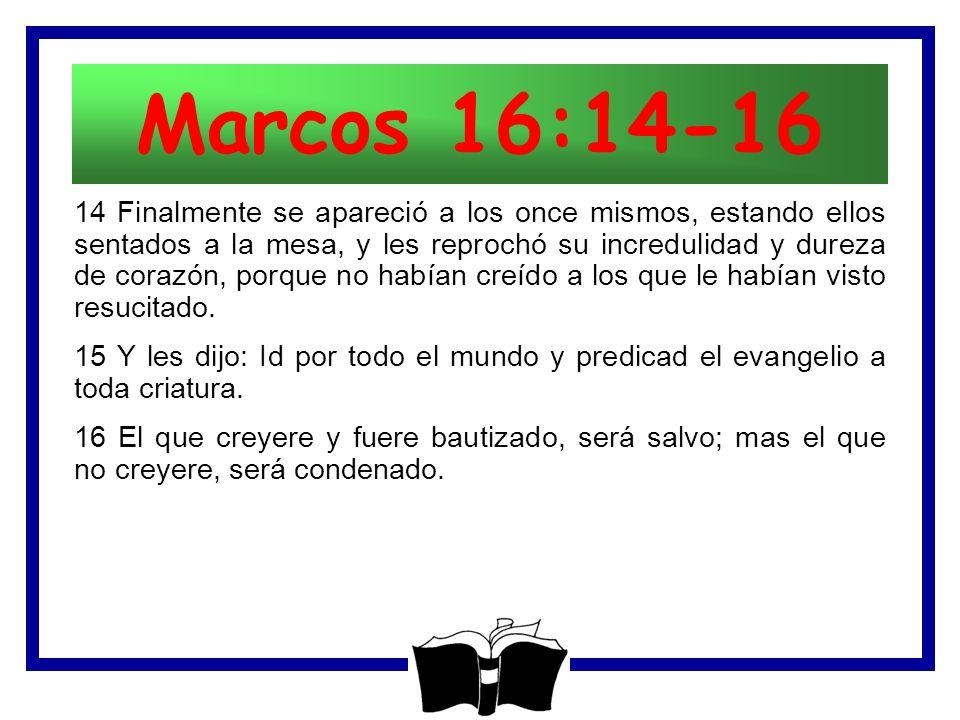 La Comisión del Señor Mateo 28: ppt descargar