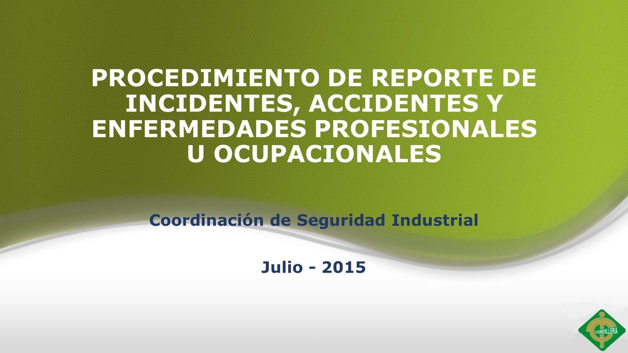 Coordinación de Seguridad Industrial Julio - ppt descargar