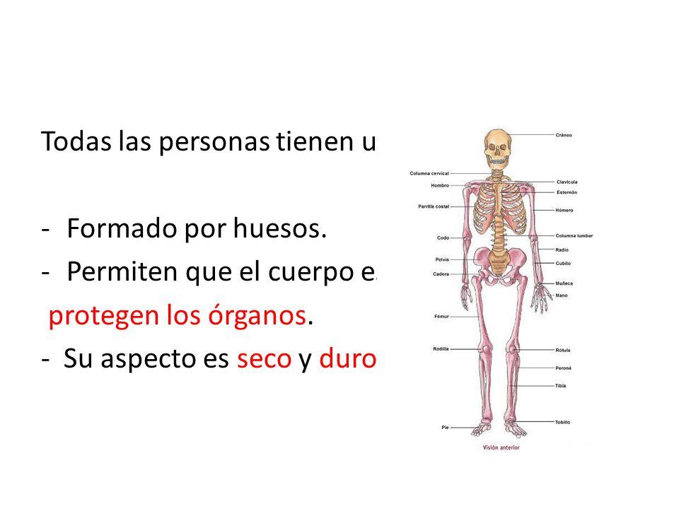 Todas las personas tienen un esqueleto - ppt descargar