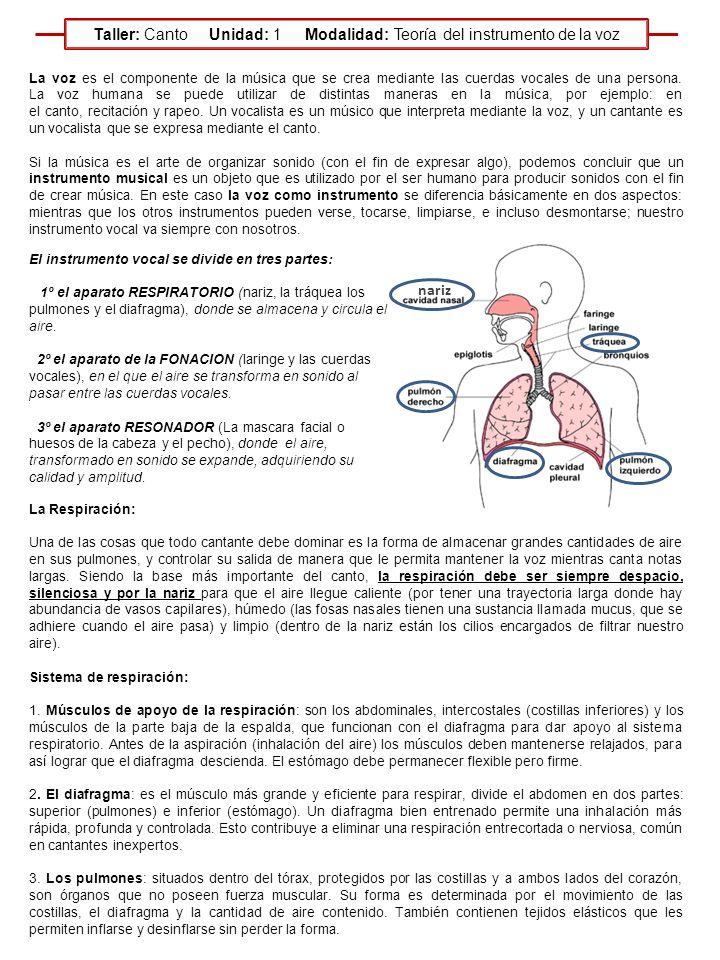 Lujoso Canciones Para La Anatomía Del Hueso Fotos - Imágenes de ...