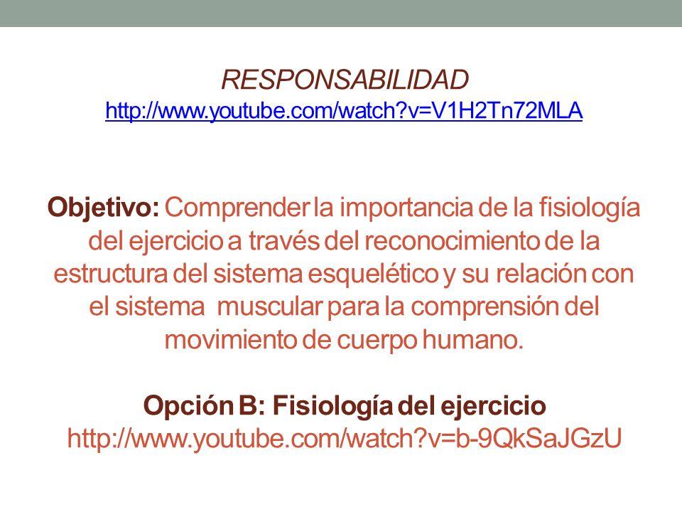 RESPONSABILIDAD youtube. com/watch - ppt descargar