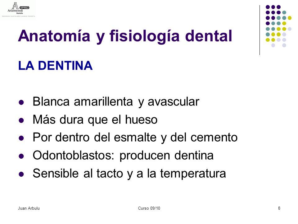 Bloque III: Anatomía y fisiología bucodental - ppt descargar