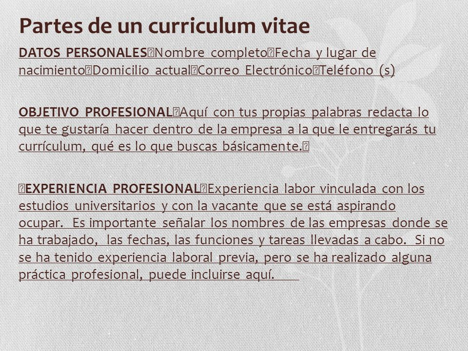 El Curriculum Vitae En Espanol Y Como Debe Ser Elaborado Ppt Video