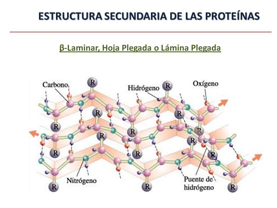 Tema 4 Proteínas Ppt Video Online Descargar