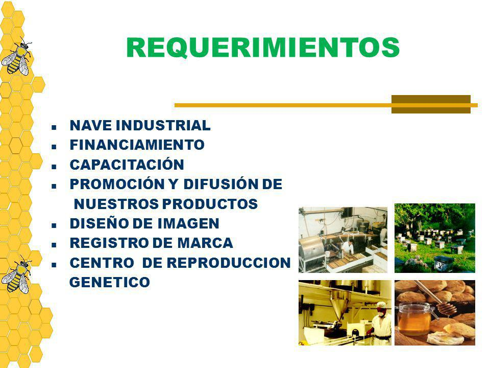 REQUERIMIENTOS NAVE INDUSTRIAL FINANCIAMIENTO CAPACITACIÓN