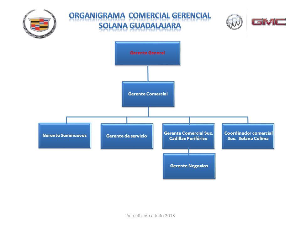 Organigrama comercial Gerencial SOLANA GUADALAJARA - ppt ...