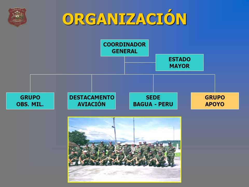 ORGANIZACIÓN COORDINADOR GENERAL ESTADO MAYOR GRUPO OBS. MIL.