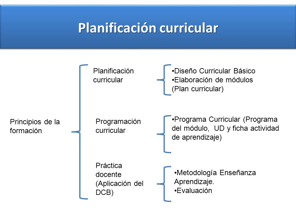 Diseño Curricular Básico Educación Superior Tecnológica