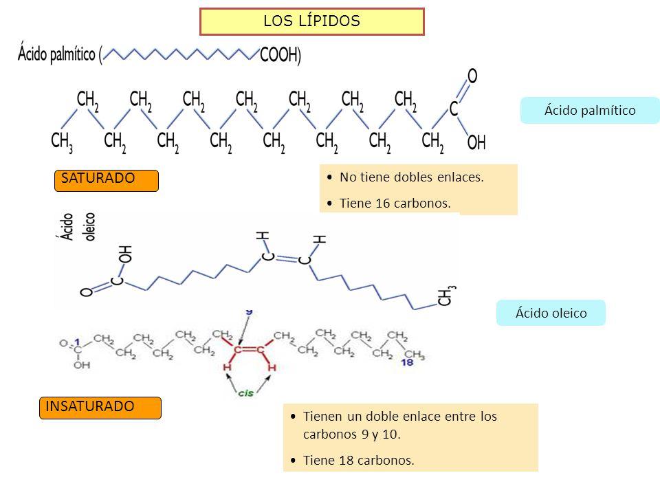 Clasificación Según Su Estructura Molecular Ppt Descargar