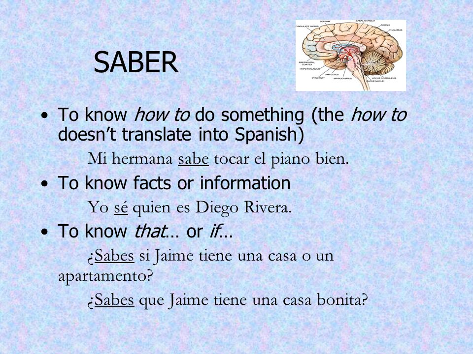 SABER To know how to do something (the how to doesn't translate into Spanish) Mi hermana sabe tocar el piano bien.