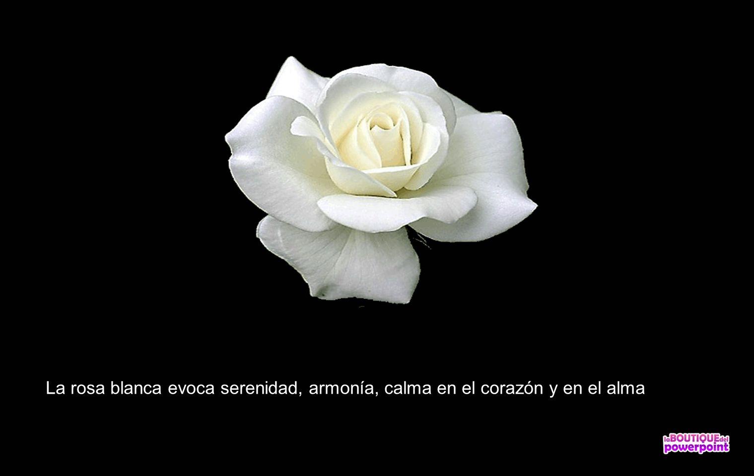 El Lenguaje De Las Flores Ppt Descargar